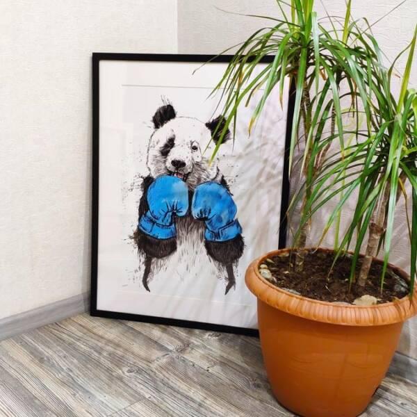 Постер панда в раме 3