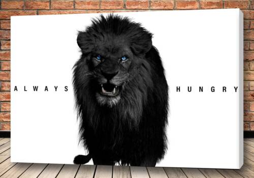 Картина Lion - Criss Bellini